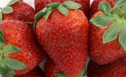 Sadzenie i pielęgnacja truskawek. Czy znasz popularne odmiany truskawek?