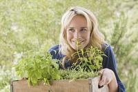 Jak stworzyć ogródek ziołowy?