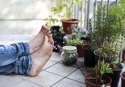 Warzywa i zioła w doniczce, czyli wyhoduj sobie balkon