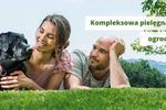 Pielęgnacja ogrodu: koszenie trawnika, cięcie krzewów i drzew, dobór urządzeń i narzędzi